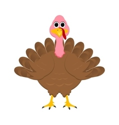 Holiday turkey on Thanksgiving Day vector image