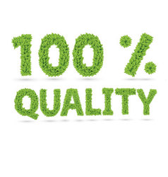 One hundred percents quality word of green leafs vector