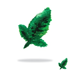 Oil painted green leaf vector image