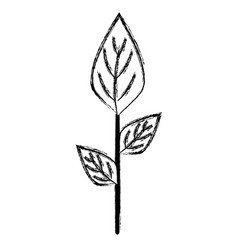 Figure ecology plants with leaves icon vector