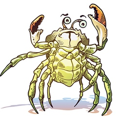 Sea Crab vector image vector image