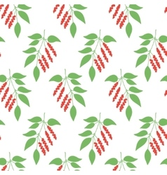 Seamless pattern leaves of Chinese Schisandra vector image vector image