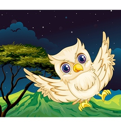 A nocturnal creature vector image vector image