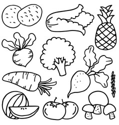 set of various vegetables doodles vector image vector image