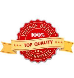 Vintage badge design vector image