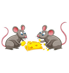 Two rats eating cheese vector