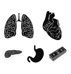 Heart lungs stomach pancreas human organs set vector