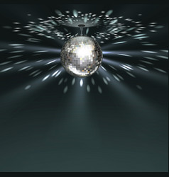 silver disco ball vector image
