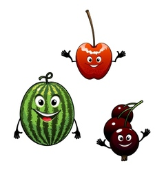 Watermelon currant and cherry cartoon fruits vector