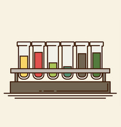 Five multicolor test tubes with liquid in rack vector
