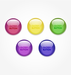 glossy button vector image vector image