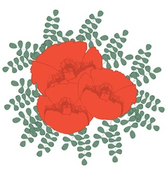 Hand drawn red poppies vector image vector image