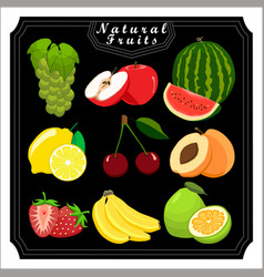 The theme set fruits vector