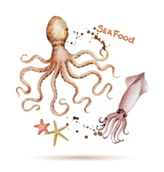 Watercolor octopus and squid vector