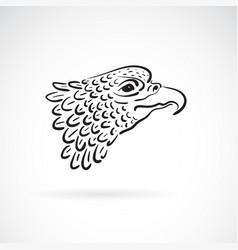 eagle head on white background bird wild vector image vector image