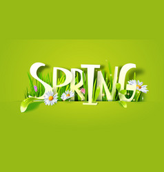 Spring paper lettering with grass vector