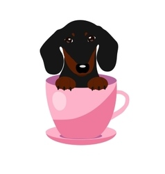 Cute dachshund dog in pink teacup vector