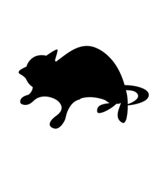 Icon cat vector