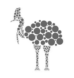 Cassowary isolated on white background vector
