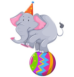 Happy elephant balancing on ball vector