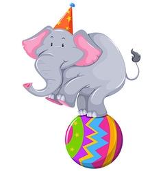 Happy elephant balancing on ball vector