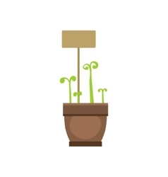 Several sprouts in one pot vector