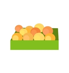 Box with fruits concept vector