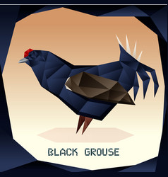 origami black grouse vector image
