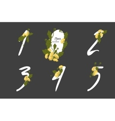 Floral Dandelion collection numbers in vintage vector image