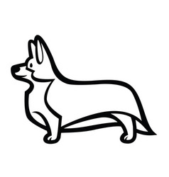 standing in profile dog welsh corgi breed vector image
