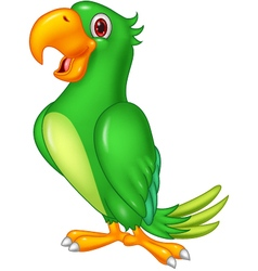 Cartoon happy parrot posing vector image