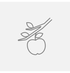 Apple harvest line icon vector