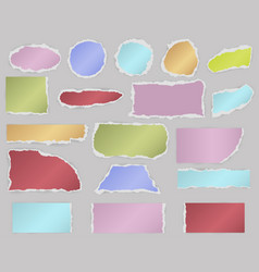 Pieces of torn blank paper vector