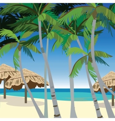 Tropic Beach with Palm trees vector image vector image