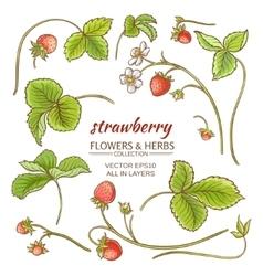 strawberry elements set vector image