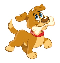 Cartoon dog with bone vector