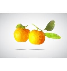 Low poly mandarin vector