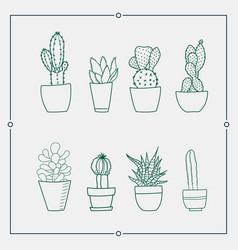 Green cactus in a pot vector