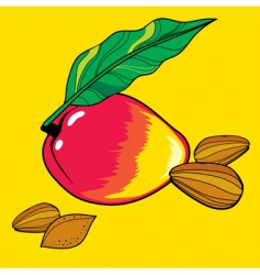 mango and almond vector image vector image