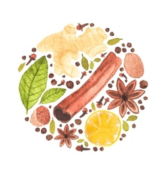 watercolor circle design made of spices for vector image vector image