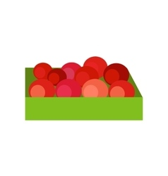 Box with Fruits Concept vector image vector image