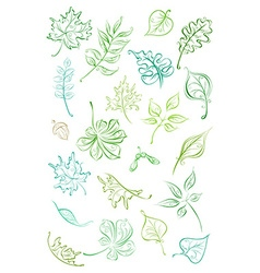set of linear leaves vector image
