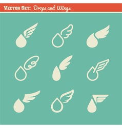 Drops and wings collection of design elements vector