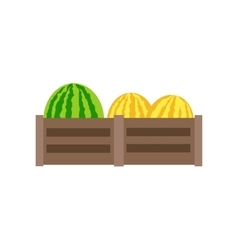 Melon in flat style design vector
