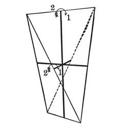 Symmetry of sphenoidal class vintage vector