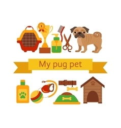 Pug dog infografic concept with dog grooming vector