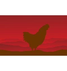 Silhouette of rooster on red backgrounds vector
