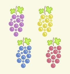 Set colorful bunches of grape vector