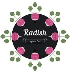 Radish vegetables vector