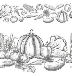 seamless borders of vegetables vector image